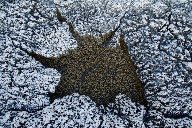 Textura de rocha na costa de kamenjak em ístria, croácia