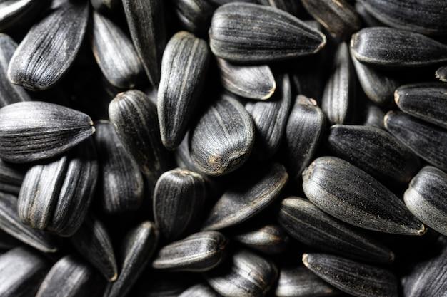 Textura de sementes de girassol
