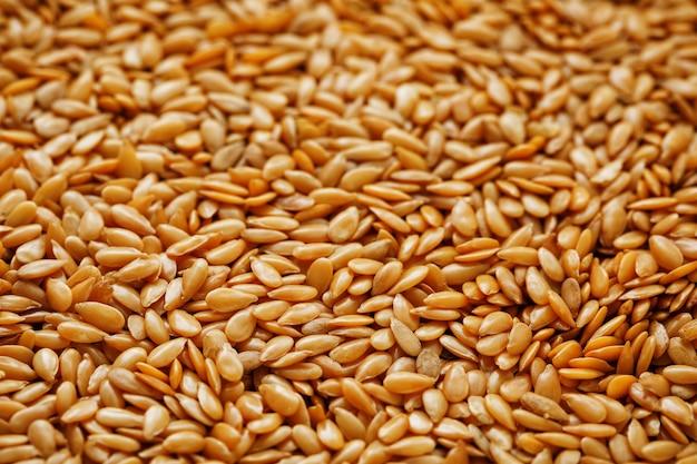 Textura de sementes de linho brancas. cereais úteis.