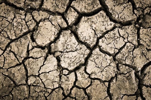 Textura de solo de solo de terra rachada seca