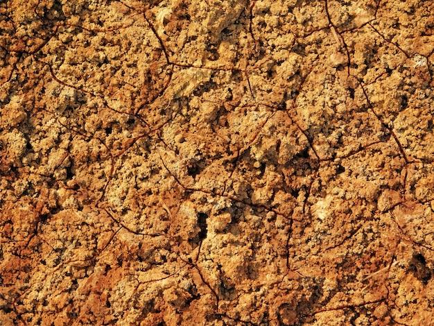 Textura de solo seco ao ar livre