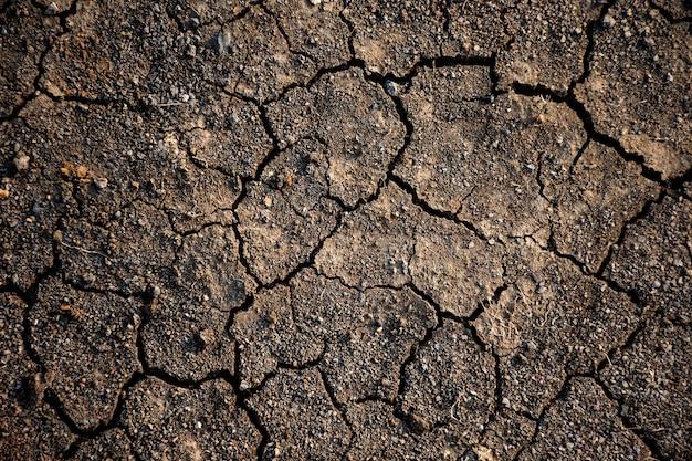 Textura de terra seca e rachada devido à ausência de chuva e seca.
