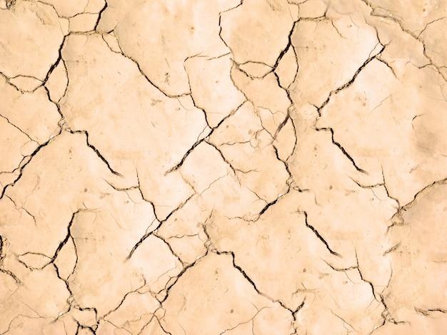 Textura de terra seca