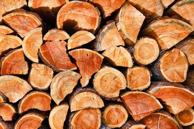 Textura de toras de madeira secas picadas