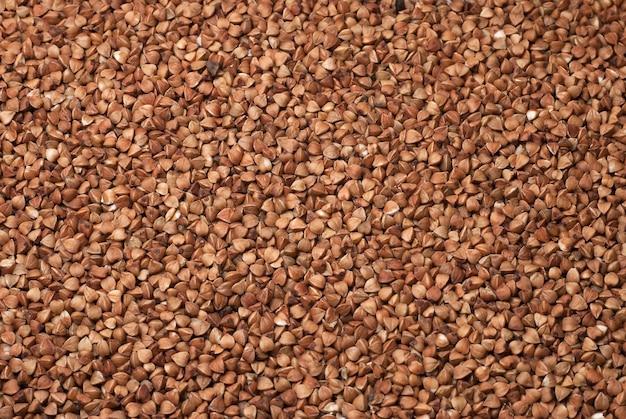 Textura de trigo sarraceno. a imagem pode ser usada como fundo.