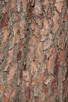 Textura de tronco resistida