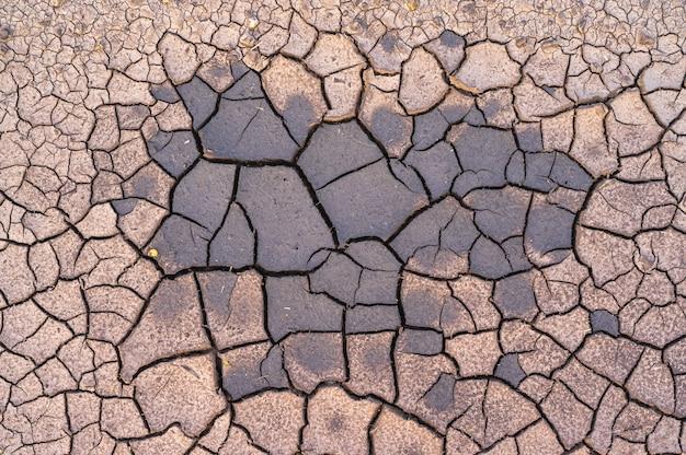Textura de turfa seca quebrada com um pouco de umidade no centro
