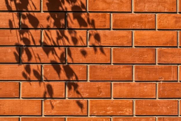 Textura de uma parede de tijolo vermelho iluminada pelo sol com a sombra de uma árvore.