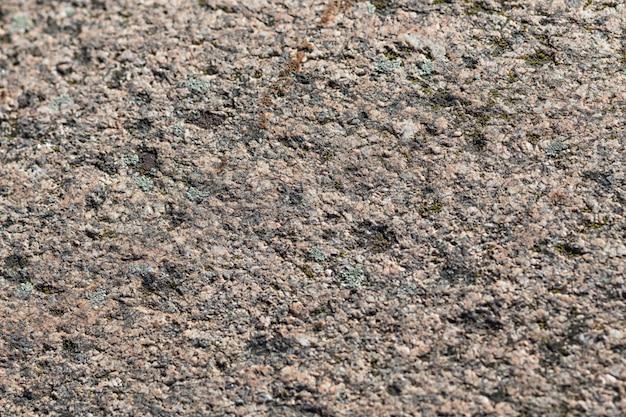 Textura de uma pedra com musgo