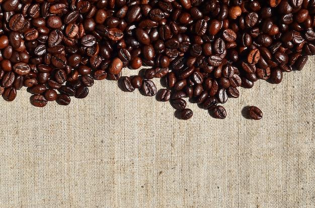 Textura de uma tela cinza feita de serapilheira velha e grossa com grãos de café sobre ele