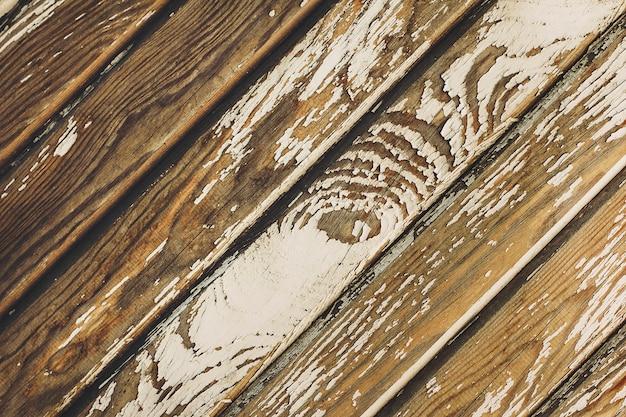 Textura de uma velha árvore