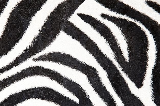 Textura de zebra preto e branco
