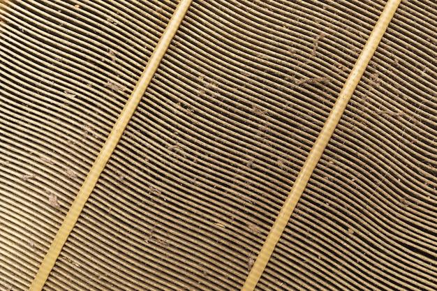 Textura do filtro de ar do motor de carro antigo