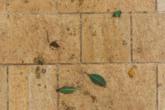 Textura do solo de pedra