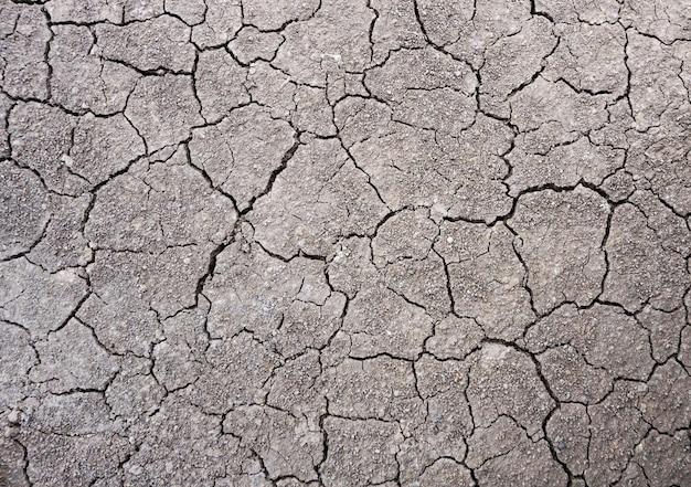 Textura do solo seco no chão