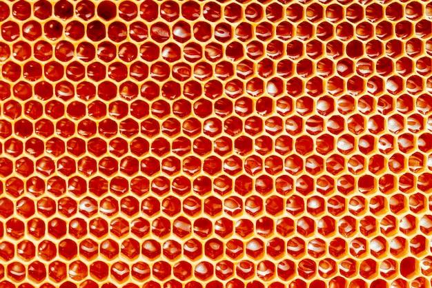 Textura e padrão de uma seção de favo de mel de cera de uma colmeia cheia de mel dourado