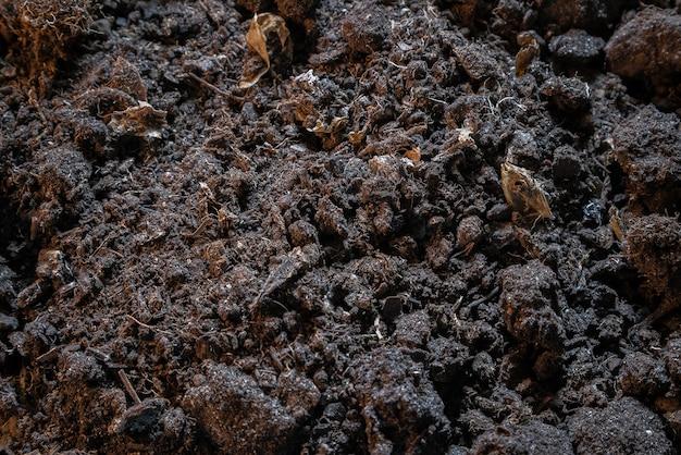 Textura escura de solo de terra preta.