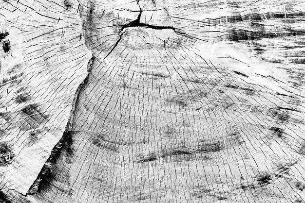 Textura, madeira, fundo da parede. textura de madeira com arranhões e rachaduras