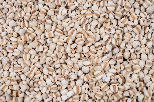 Textura natural de grãos de milho orgânico para plano de fundo.
