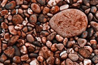 Textura rochas dos fundos marinhos