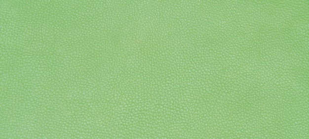 Textura verde de couro