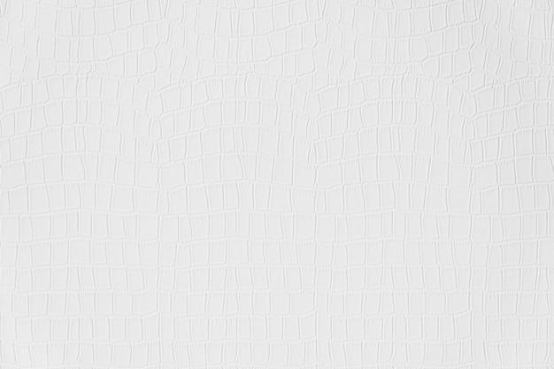 Texturas de couro de cor branca e cinza e superfície