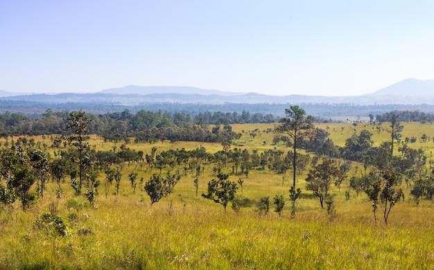 Thung salaeng luang national park. phitsanulok norte da tailândia.
