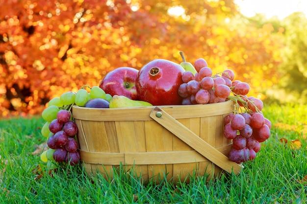 Tigela de ação de graças frutas maçãs pêras romãs