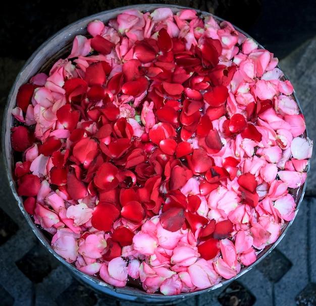 Tigela de água com pétalas de rosa vermelhas e rosa