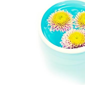 Tigela de água e flores