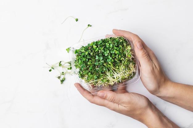 Tigela de microgreens segurada pelas mãos