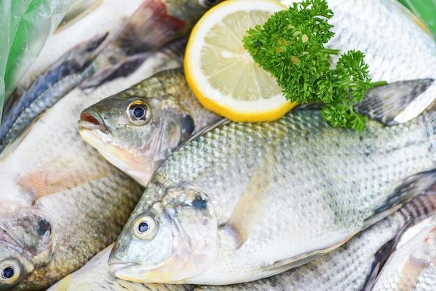 Tilapia peixe tilápia crua de água doce da fazenda em comida de mercado de gelo, peixe fresco