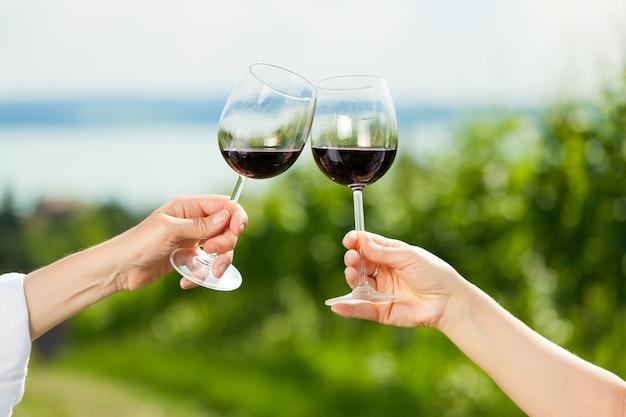 Tilintar copos de vinho no lago no verão