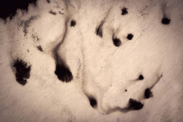 Tinta preta espalhada e absorvida sobre papel branco de close-up. filtro escuro do fundo abstrato. manchas de tinta se espalham e são absorvidas pela macro do papel.