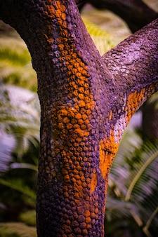 Tiro abstrato vertical de um pedaço de madeira com cores laranja e roxas no fundo desfocado