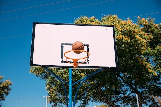 Tiro bem sucedido da aro de basquetebol
