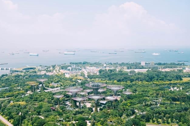 Tiro bonito da vista aérea do jardim pela baía em singapura