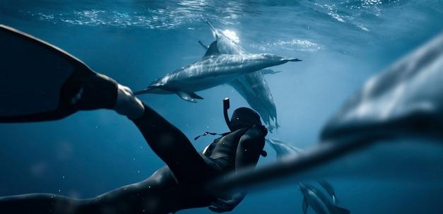 Tiro completo nadando com golfinhos
