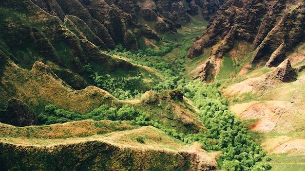 Tiro de alto ângulo bonito dos penhascos da montanha e árvores capturadas em kauai, havaí