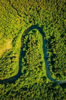 Tiro de ângulo alto de um lago cheio de curvas em uma floresta cercada por muitas árvores verdes altas