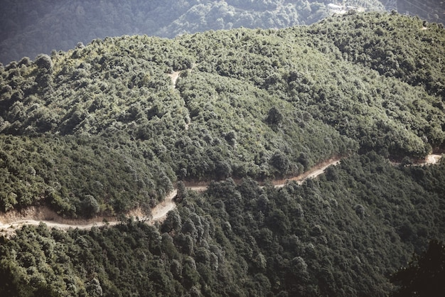 Tiro de ângulo alto de uma estrada ao lado de uma montanha arborizada