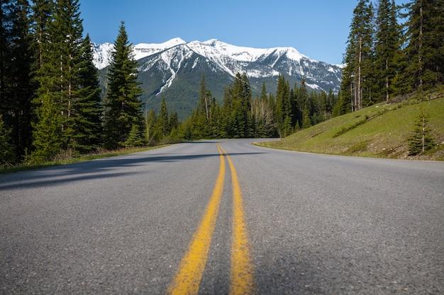 Tiro de ângulo baixo de uma rodovia cercada por uma floresta e as montanhas nevadas