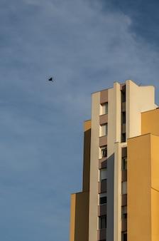 Tiro de ângulo baixo vertical de um pássaro voando acima de um edifício moderno concreto