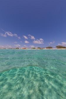 Tiro de ângulo baixo vertical do oceano em bonaire, caribe