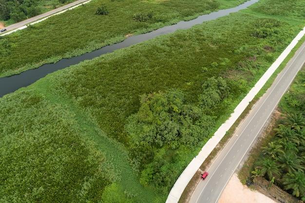 Tiro de drone de vista aérea da estrada entre a floresta de verão de campo verde e o rio e o lago em suratthani tailândia.