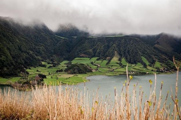 Tiro de longo alcance de um campo de grama perto de montanhas arborizadas no nevoeiro perto do mar