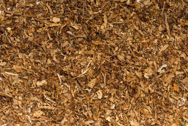 Tiro de quadro completo de tabaco