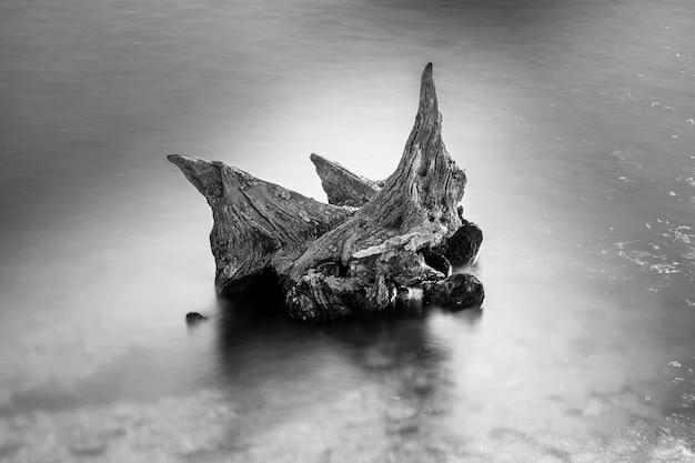 Tiro em escala de cinza de um pedaço de madeira no mar