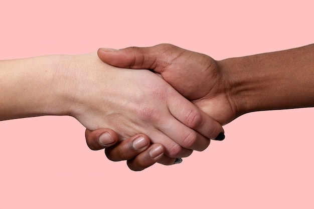 Tiro horizontal do aperto de mão entre homem afro-americano e mulher caucasiana posar sobre parede rosa, cumprimentam-se, demonstram relacionamento internacional. feche acima do tiro. apertando as mãos