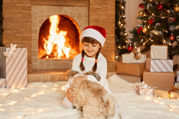Tiro interno de menina feliz vestindo suéter branco e chapéu de papai noel, brincando com seu lindo cachorro pequinês, sentado no chão perto da árvore de natal, caixas de presentes e lareira.